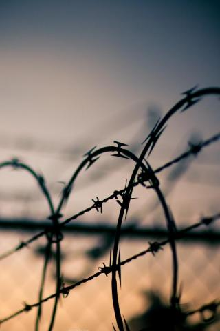 wallpaper iPhone Barbed Wire