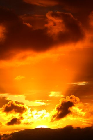 wallpaper iPhone Golden Glow