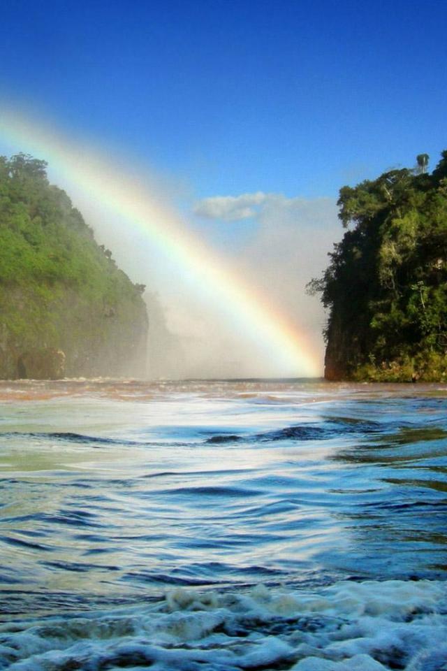 wallpaper iPhone Tropical Rainbow