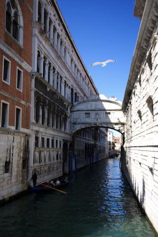 wallpaper iPhone Venice