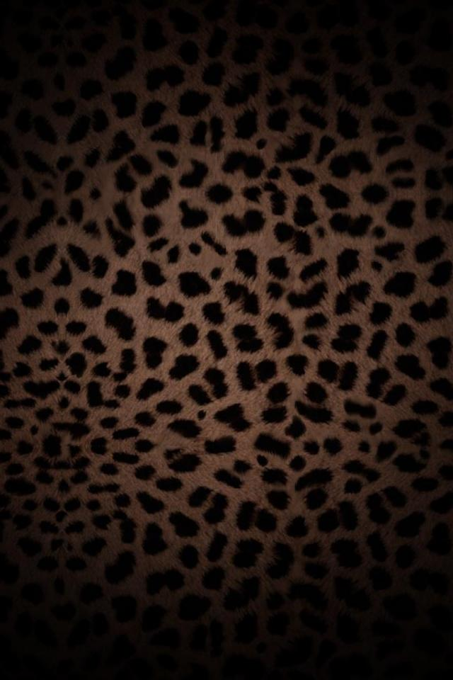 wallpaper iPhone Leopard