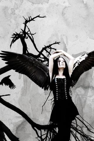 wallpaper iPhone Dark Angel