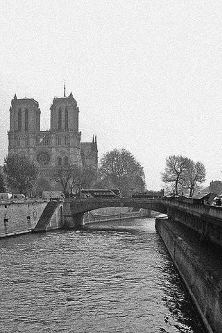 wallpaper iPhone Notre Dame