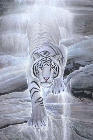 wallpaper iPhone Water Spirit