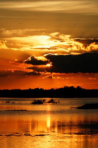 wallpaper iPhone Lake Sunset