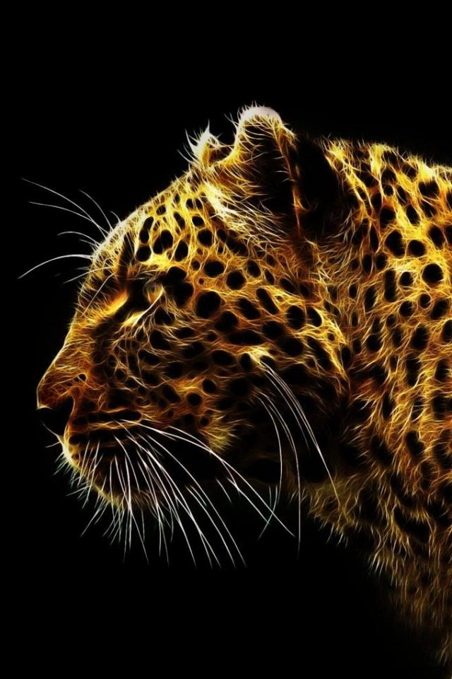 wallpaper iPhone Leopard