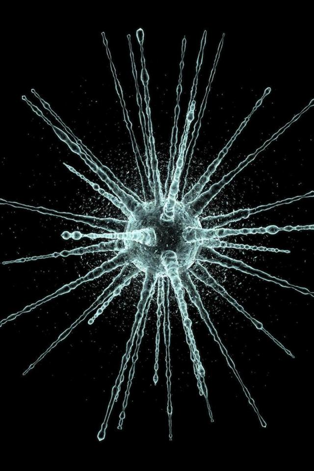 wallpaper iPhone Virus