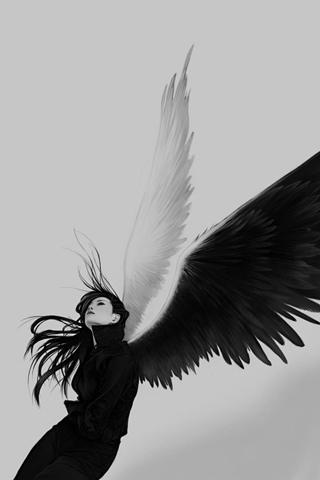 wallpaper iPhone Wings