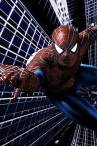 wallpaper iPhone Spider-Man